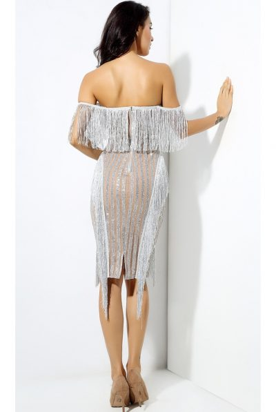 back of silver fringe dress