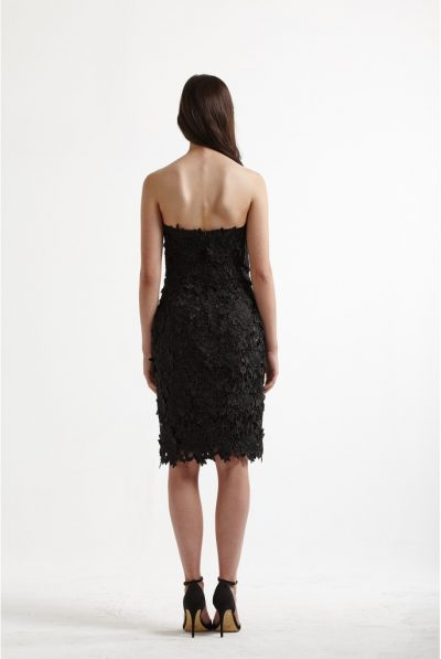 black lace dress 6679