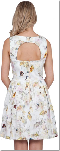 closet burrefly 2